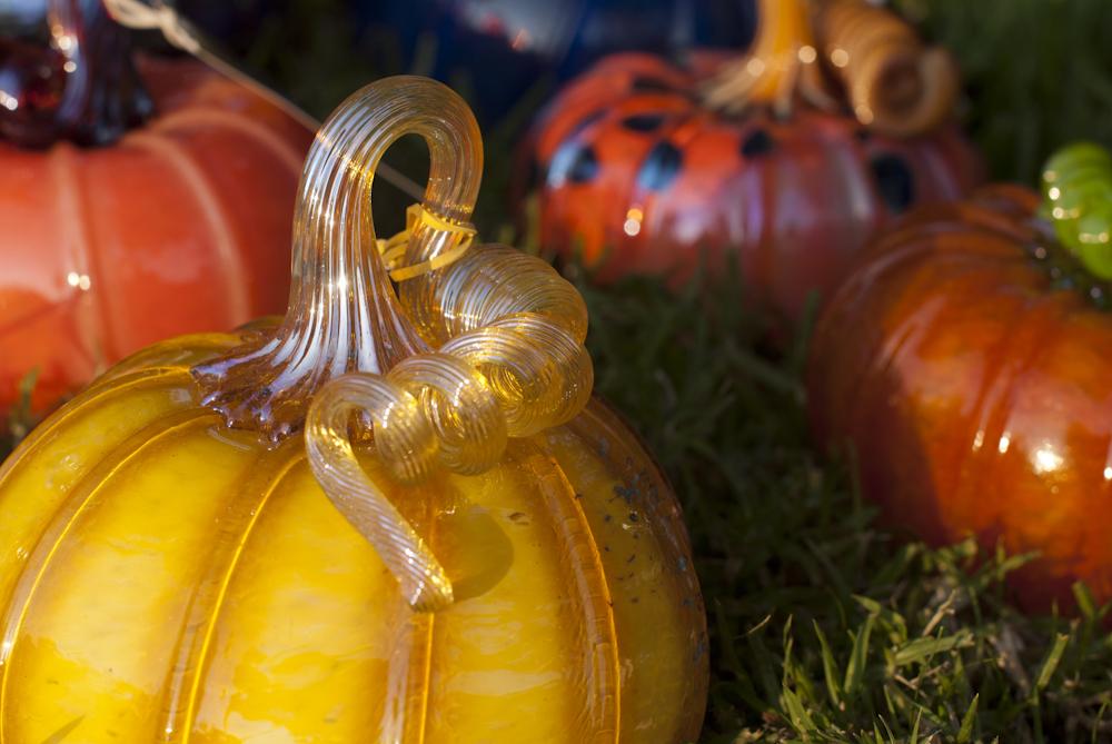 Great-Glass-Pumpkins_9-26-12_2