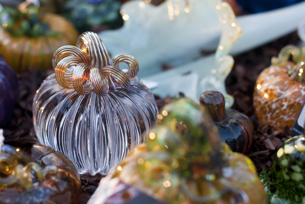Great-Glass-Pumpkins_9-26-12_4