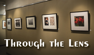 Through the Lens – PhotoCentral's Photo Reception