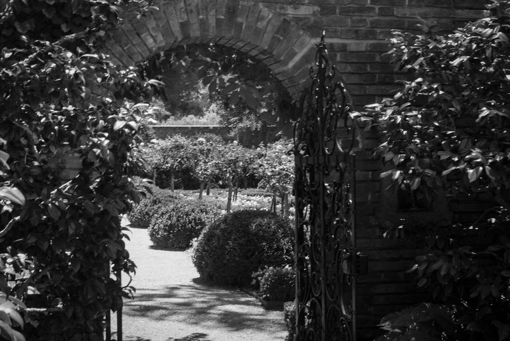 ScatterJoyPhotos_GardenBeauty-11