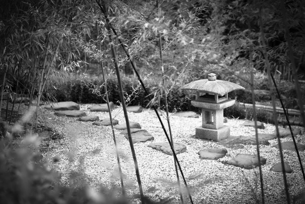 ScatterJoyPhotos_GardenBeauty-15