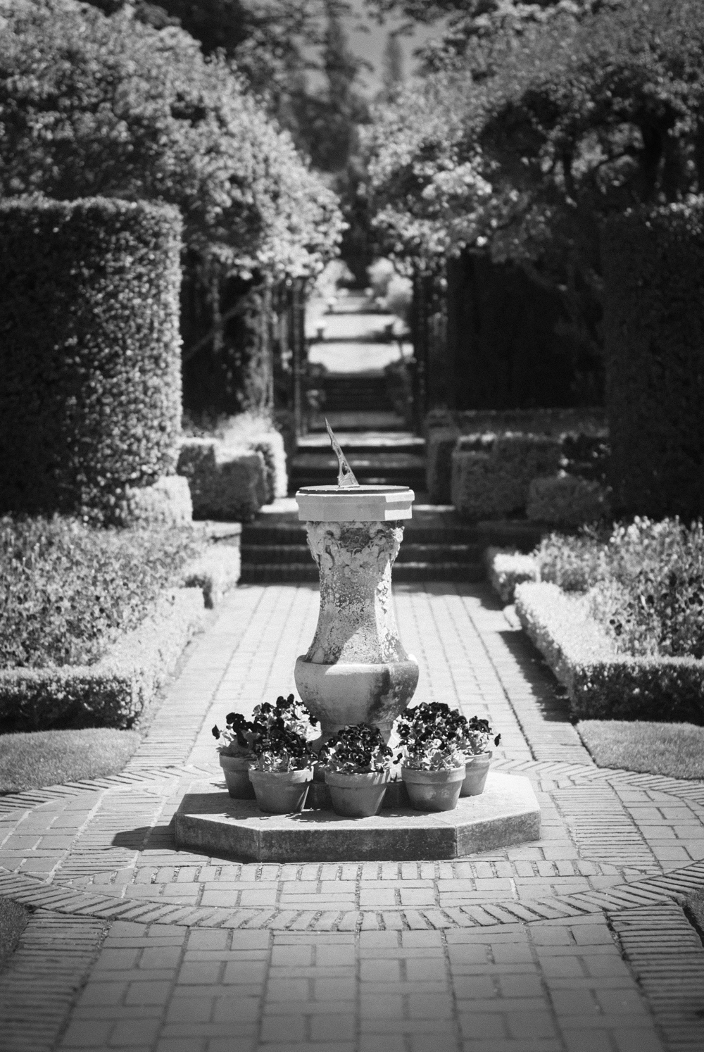 ScatterJoyPhotos_GardenBeauty-3