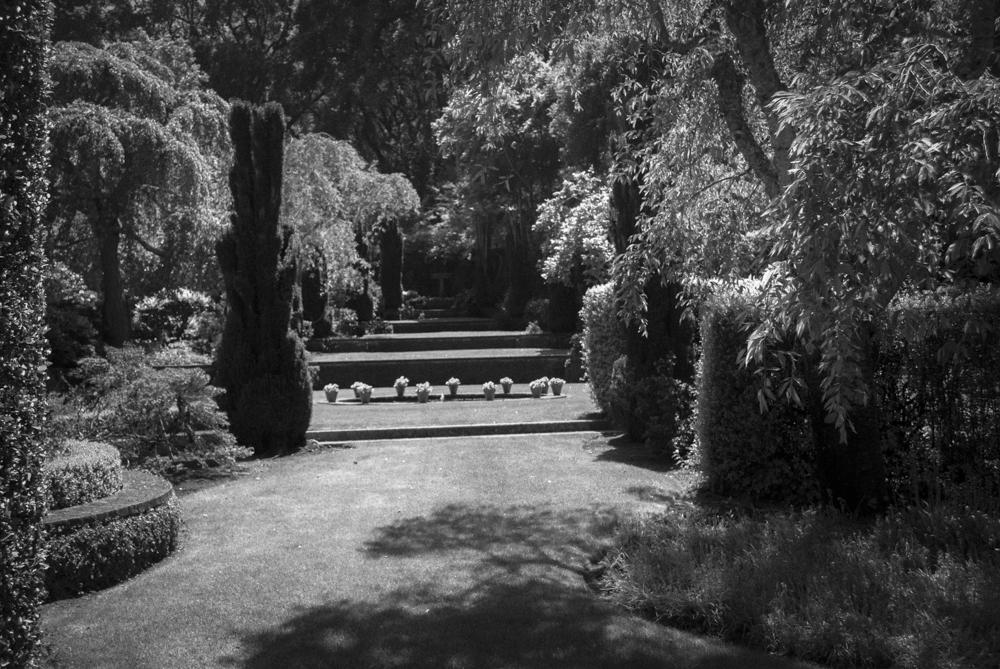 ScatterJoyPhotos_GardenBeauty-4
