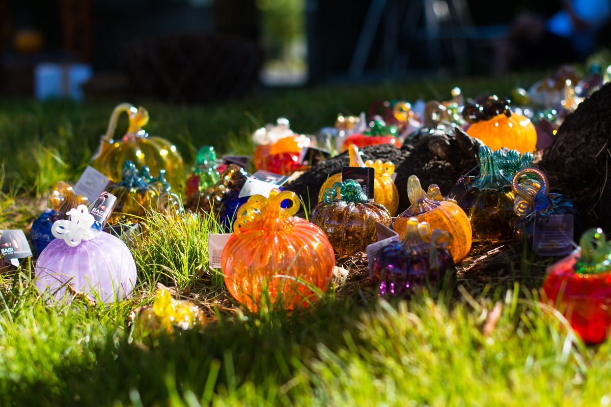 ScatterJoyPhotos_GreatGlassPumpkinPatch-2