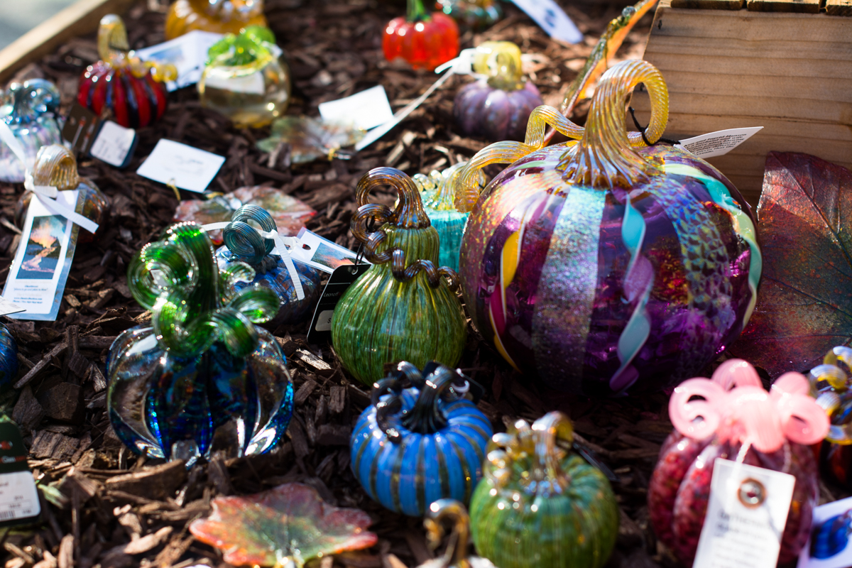 ScatterJoyPhotos_GreatGlassPumpkinPatch-9