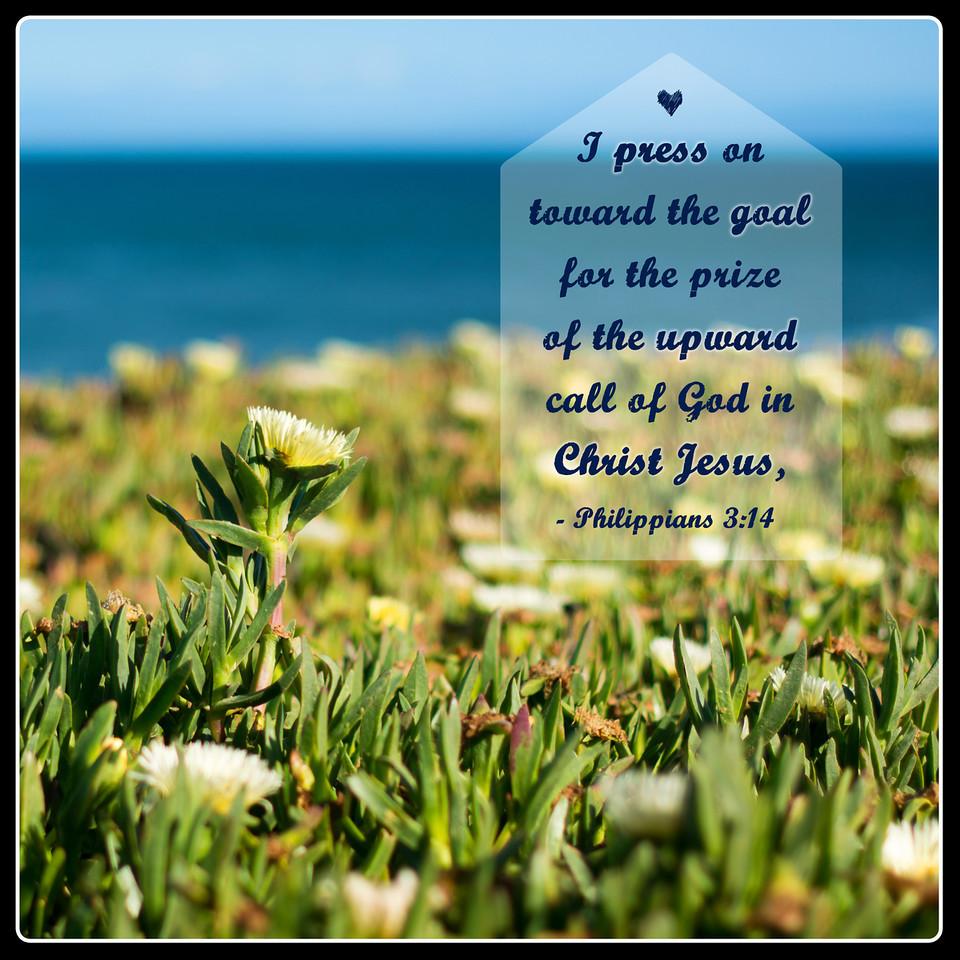 Philippians3-14_5-20-14-X2