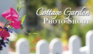 Cottage Garden Photos
