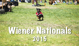 Highway Wiener Nationals 2015