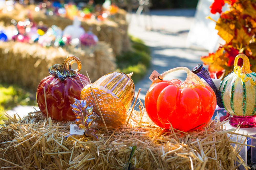 ScatterJoyPhotos_GreatGlassPumpkins10-2-15_2a