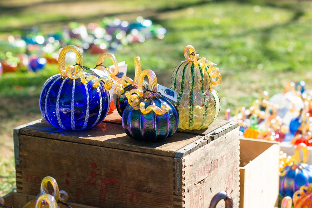 ScatterJoyPhotos_GreatGlassPumpkins10-2-15_5c