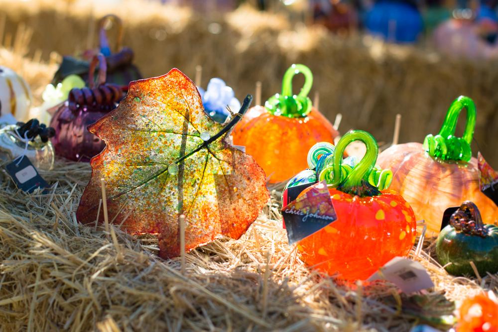 ScatterJoyPhotos_GreatGlassPumpkins10-2-15_7b