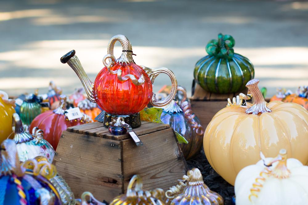 ScatterJoyPhotos_GreatGlassPumpkins10-2-15_9f
