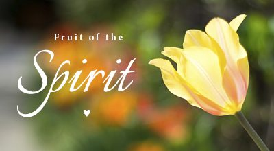 Galatians 5:22 – Fruit of the Spirit Photos